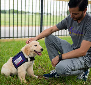Paws for Purple Hearts.
